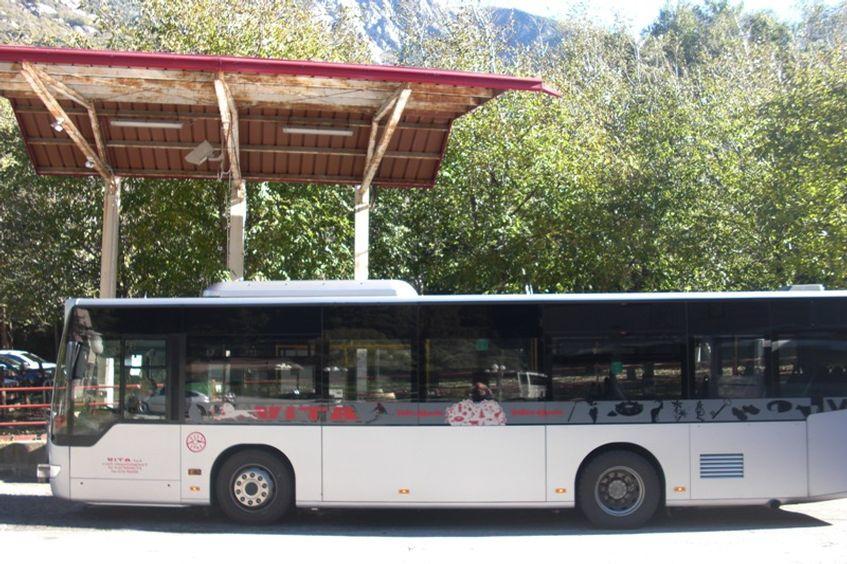 Bus di linea